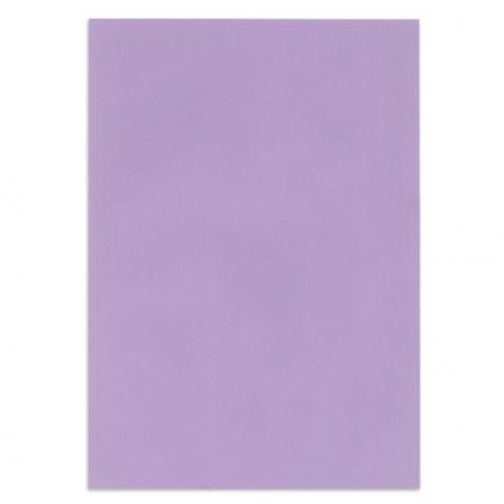 Papier couleur Lilas