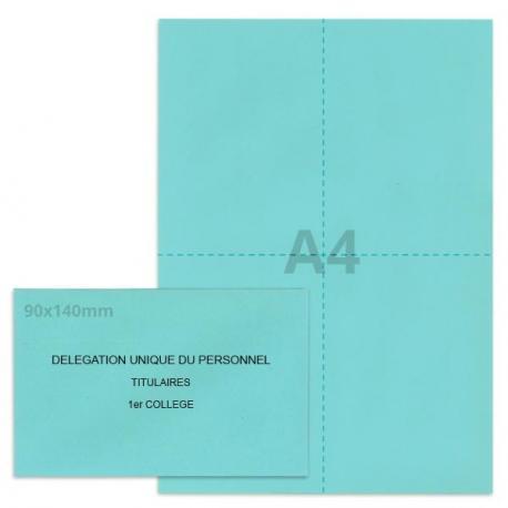 Kit élection DUP bleu clair