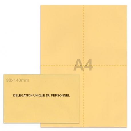 Kit élection DUP beige