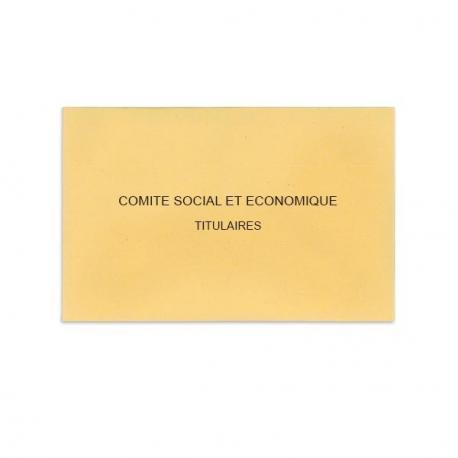 Comité Social et Economique beige