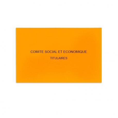 Comité Social et Economique orange
