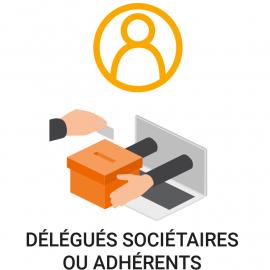 Vote électronique délégués des sociétaires ou adhérents