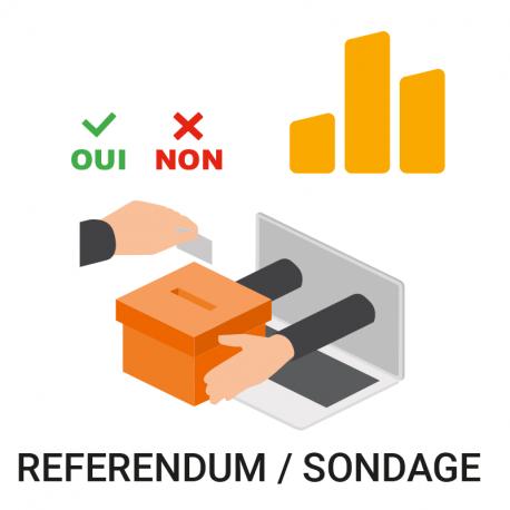 Vote électronique référendum sondage